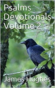 Psalms Devotionals Volume 1